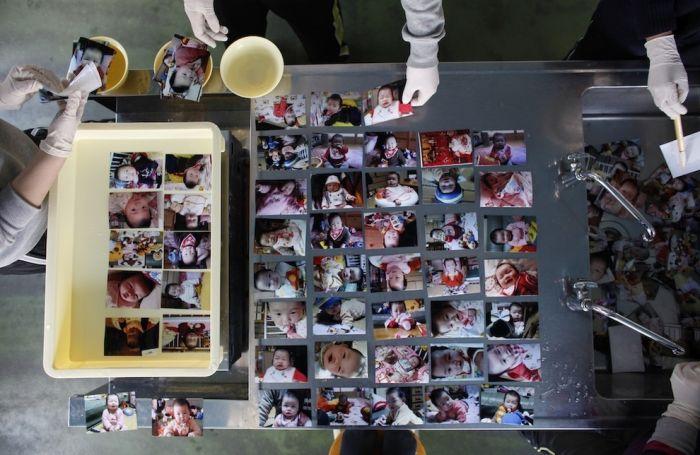 Фотографии, которые выжили после цунами в Японии (20 фото)