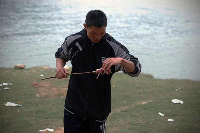 Китаец нашел крысу (5 фото)