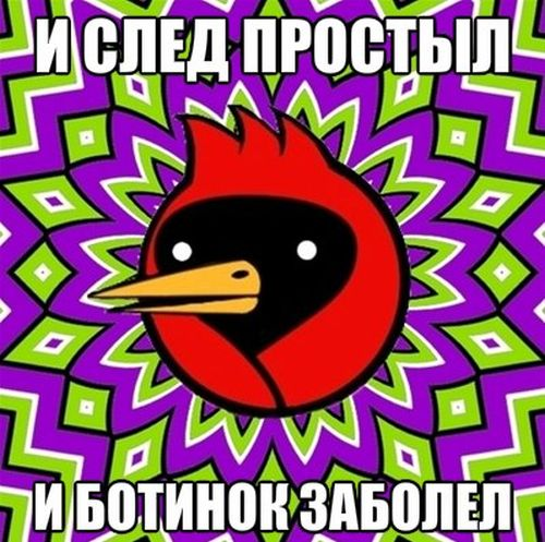 Омская птица (31 картинка)