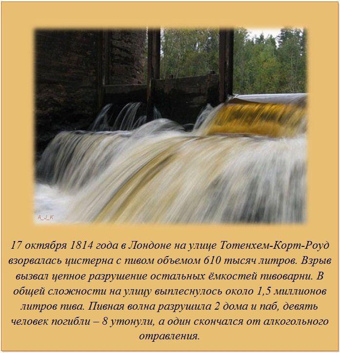 http://de.trinixy.ru/pics5/20120229/fakti_06.jpg
