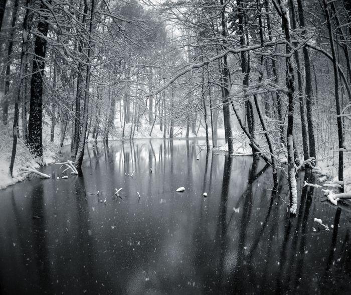 Заснеженные просторы (39 фото)