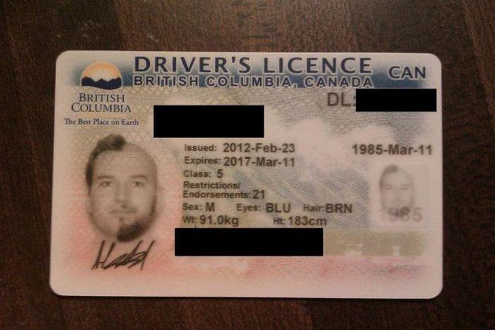 Фотография на водительские права (10 фото)