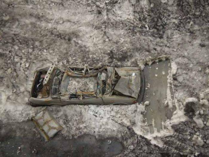 Подснежники в Норильске (92 фото)