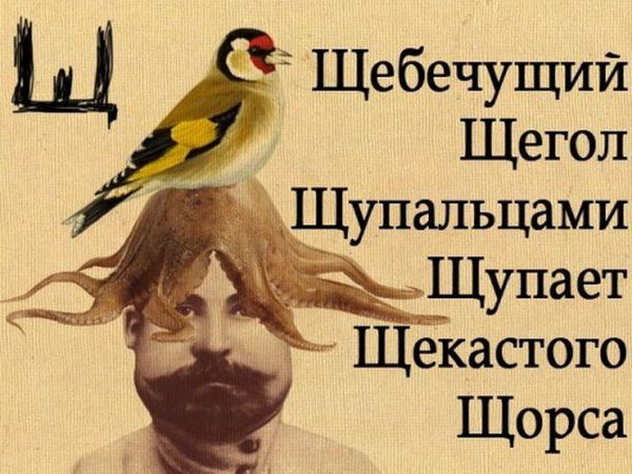 Прикольный алфавит (33 картинки)