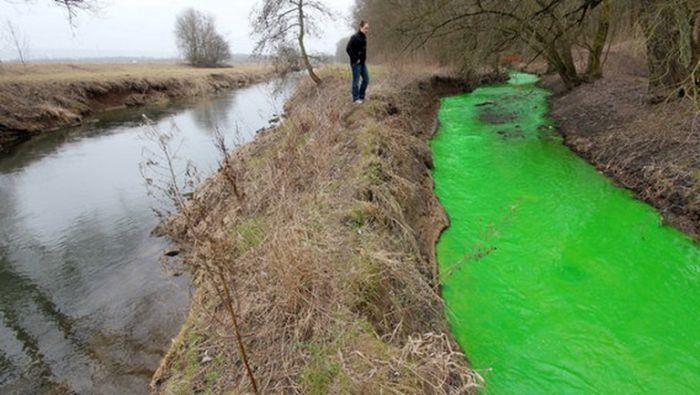 Химический выброс в немецкую реку (6 фото)