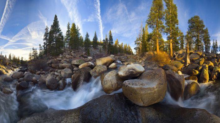 Удивительная природа (50 фото)