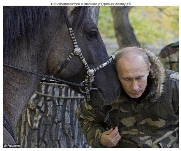 Почему Путин победил на выборах (17 фото)