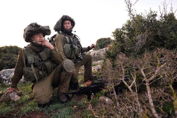 Армия обороны Израиля (43 фото)