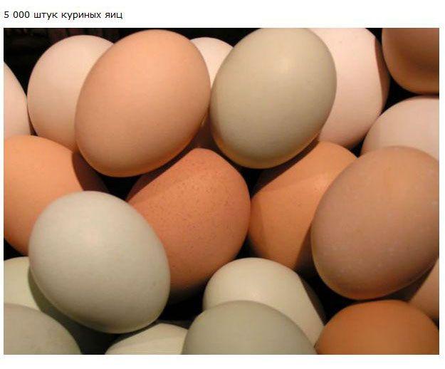 Сколько съедает человек (9 фото)