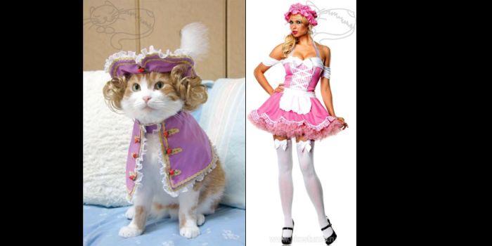 Коты и девушки (70 фото)