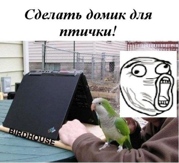 Как использовать старенький ноутбук (10 фото)