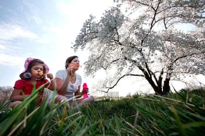 Весна (33 фото)