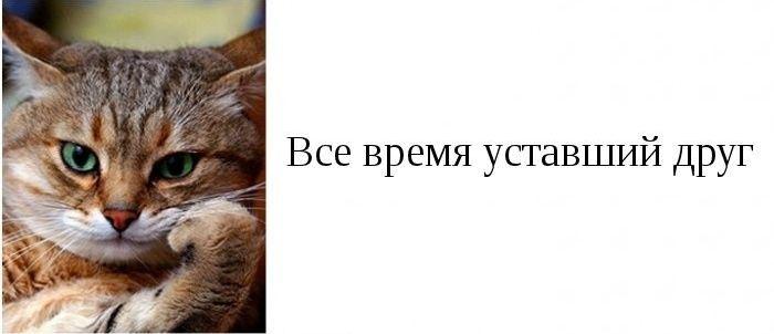 Разные типы друзей (19 картинок)