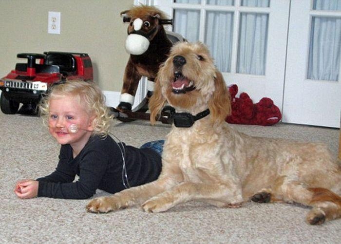 Собака для маленькой девочки (8 фото)