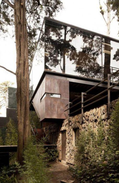 Дом с деревом внутри (24 фото)