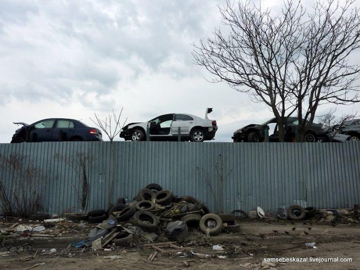 """Pайон Квинса """"Железный треугольник"""" (47 фото)"""