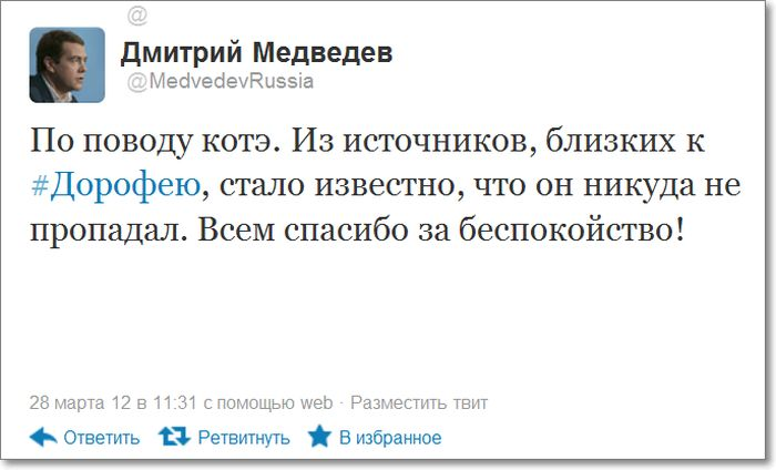 Дмитрий Медведев потерял кота (4 фото)