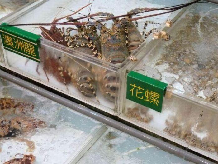 Блюда из Китая (27 фото)