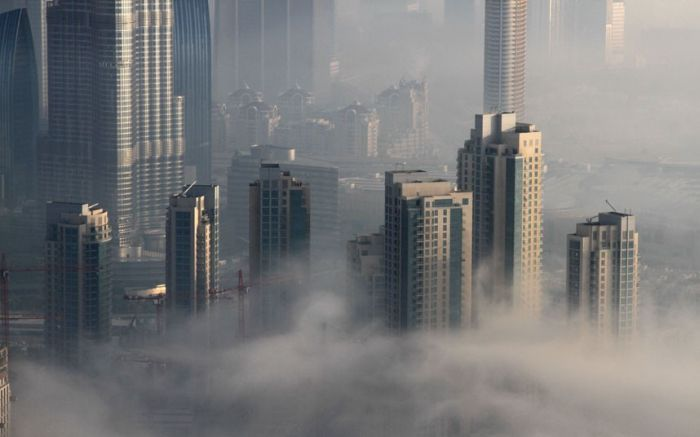 Туман вДубаи (16 фото)