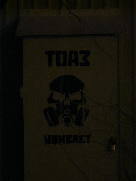 Партизанская акция тольяттинских экоактивистов (10 фото)