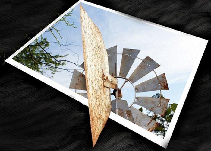 Фотографии, которые выходят за рамки (30 фото)