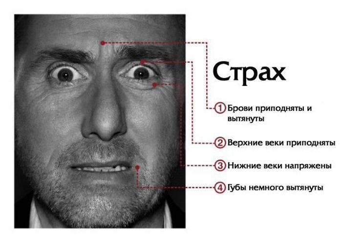 Читаем по лицам (7 фото)