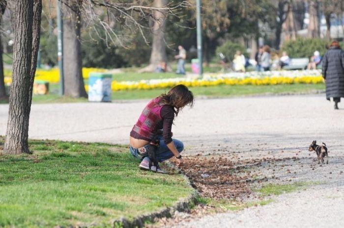 Девушка идет к успеху (17 фото)