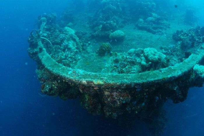 Подводный мир (38 фото)