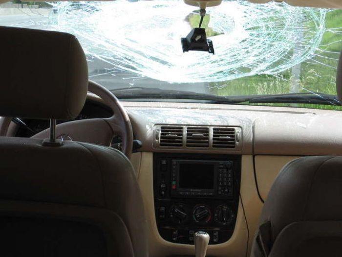 Несчастный случай на дороге (10 фото)