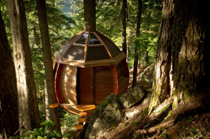 Домик на дереве (13 фото)