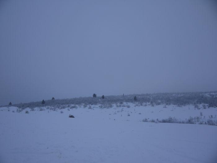 Один день среди пастухов-стадников (87 фото)