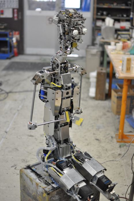 Певица-робот (15 фото + видео)
