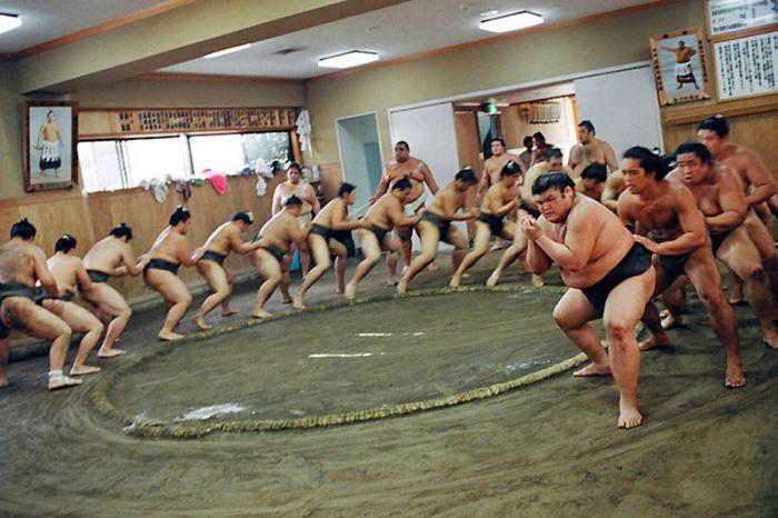 Повседневная жизнь борцов сумо (22 фото)