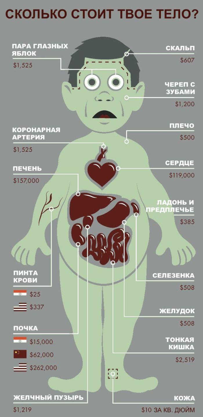 Сколько стоит человек (1 картинка)