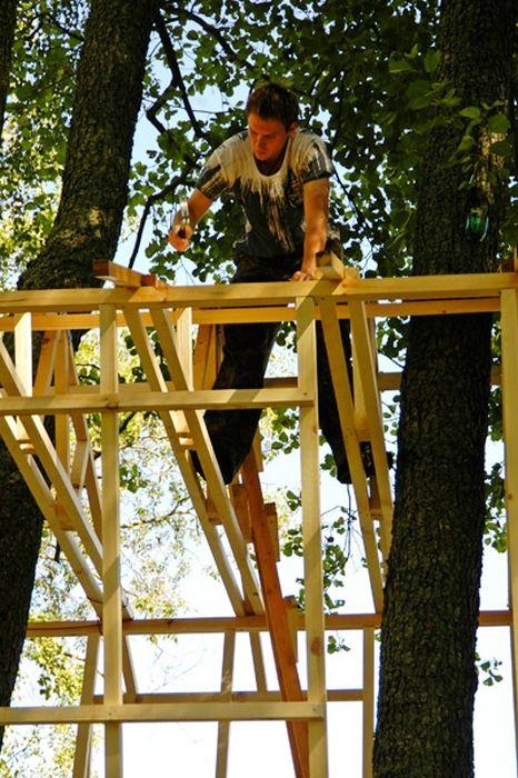 Домик на дереве (45 фото)