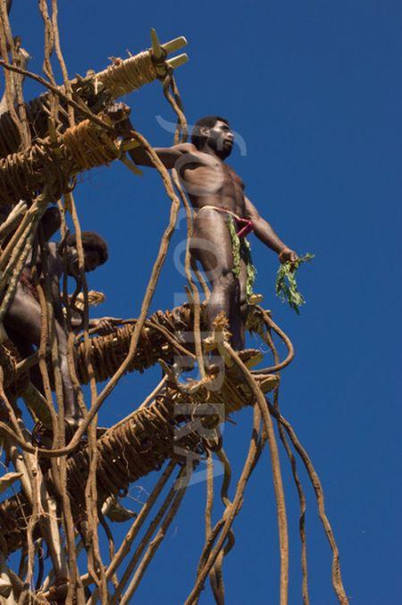 """Жители острова Вануату """"ныряют"""" в землю (18 фото + видео)"""
