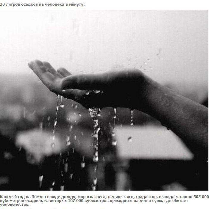 Поровну (27 фото)