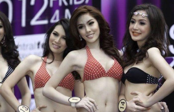 Тайские трансы фотки 87325 фотография
