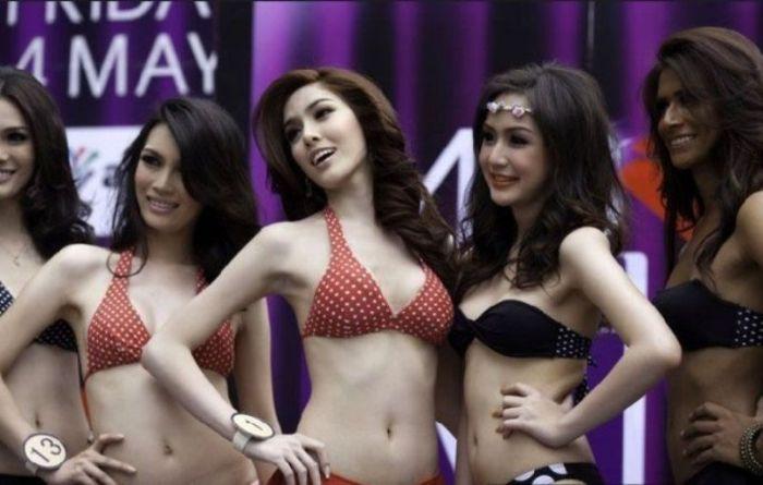 Конкурс красоты среди транссексуалов (17 фото)
