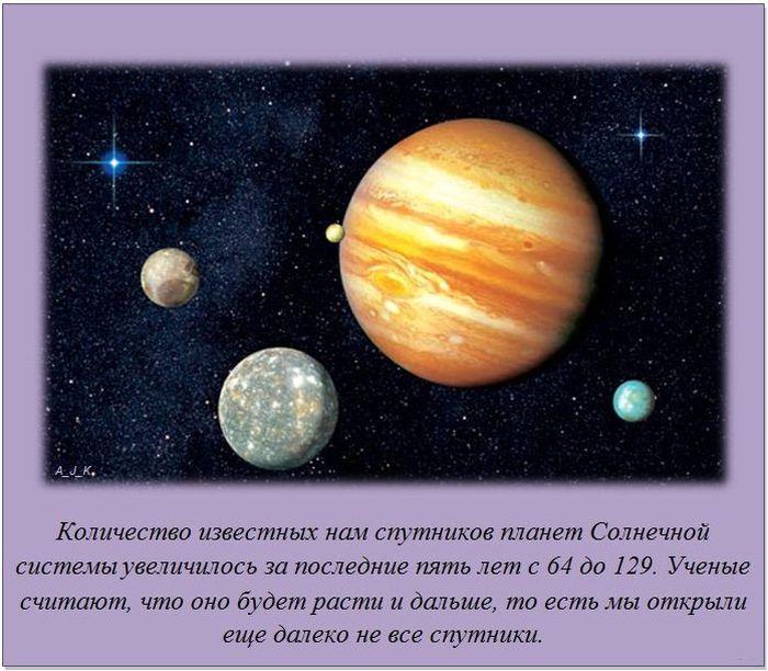 Факты обо всем на свете (20 фото)