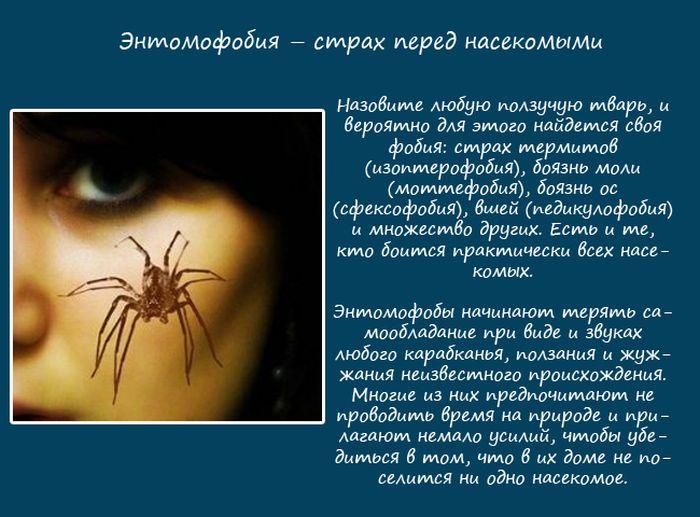 Фобии, связанные с природой (10 фото)