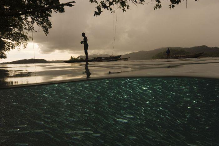 Водная стихия (43 фото)