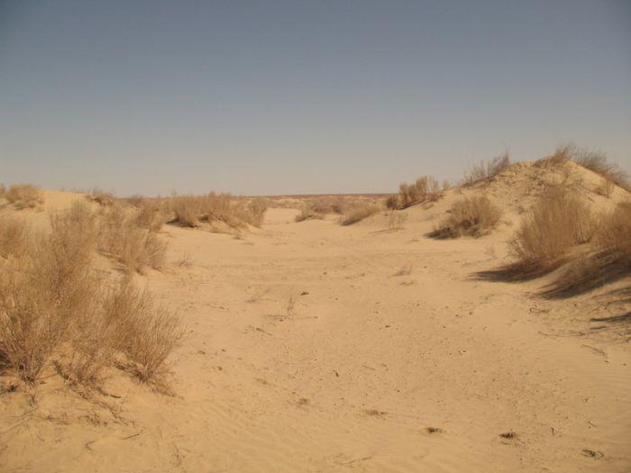 Корабли в пустыне (22 фото)