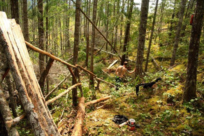 Рампа в лесу (14 фото)