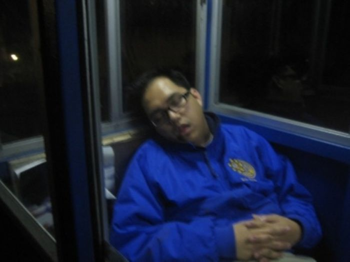 Спящая охрана (30 фото)