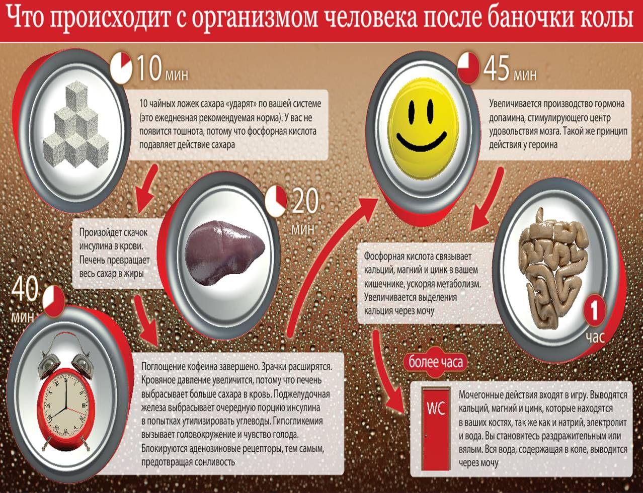 Как действует кола на организм (1 картинка)
