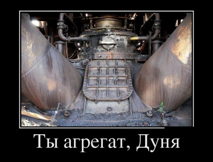 Демотиваторы (30 фото) » Триникси