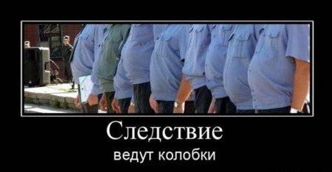 Демотиваторы (15 фото)