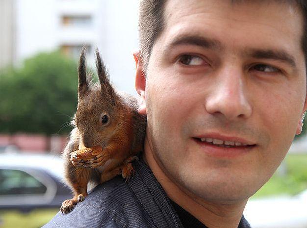 Лучший друг минского таксиста (5 фото)