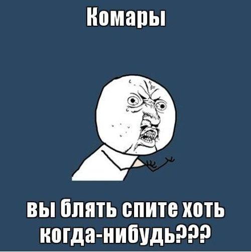 comix_05.jpg